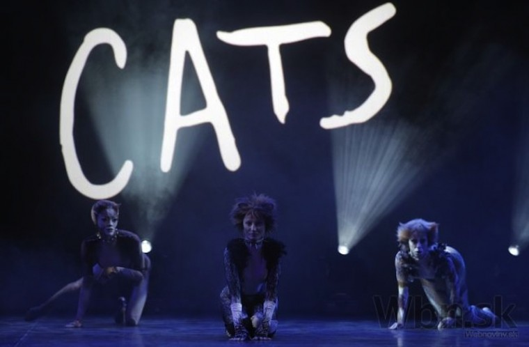 nova-scena-pripravuje-muzikal-cats