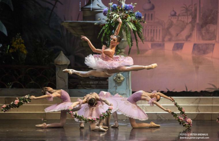Balet SND: Korzár. Romina Kolodziej. Foto: Peter Brenkus Korzár
